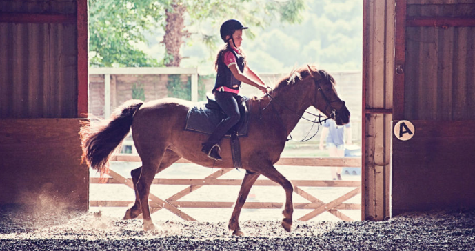 Research: Horseback Riding Improves Intelligence